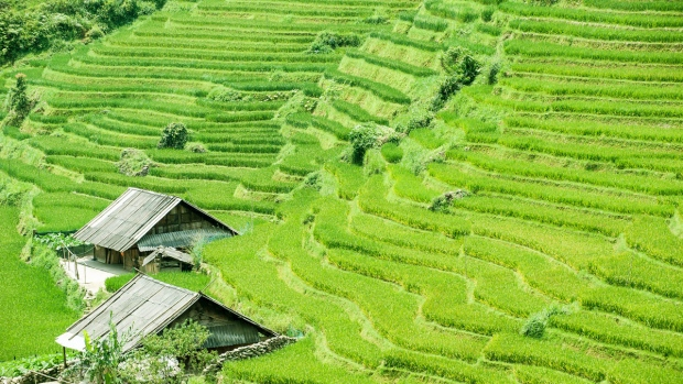SAPA 2 DAYS-1NIGHT BY BUS