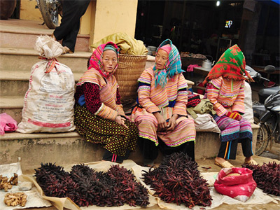 SAPA - BAC HA TOUR 3 DAYS 2 NIGHTS (BY BUS)