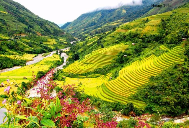 SAPA 2 DAY MINORITY TREK - 1 NIGHT VILLAGE STAY